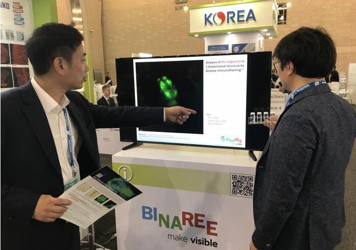 Binaree_koreaUSA