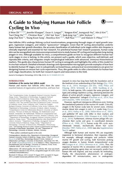 수정됨_A guide to study human hair follicle cycling in vivo-1